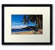 1008A-Tropical Queen Framed Print