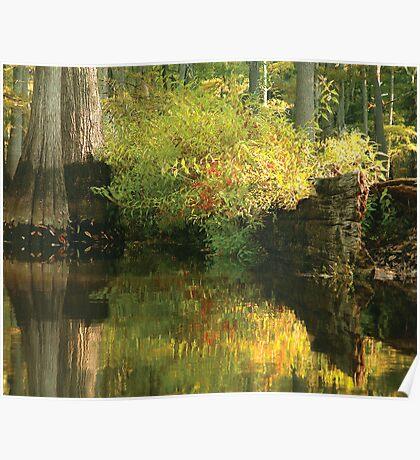 Louisiana Bayou Reflections Poster