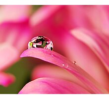 PINK Collection for the Cure - Reflecting Tears  Photographic Print