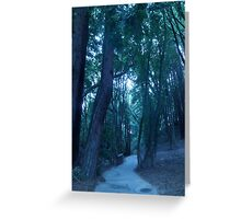 The Trails Of The Forest Greeting Card