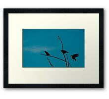 first to sniff Framed Print