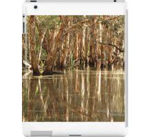 Bongil Bongil National Park, Bundagen. NSW. Australia iPad Case/Skin