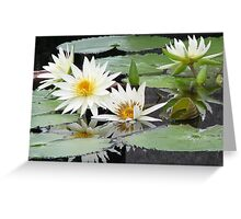 mirrored Greeting Card