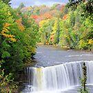 Upper Tahquamenon Falls  by Mark Bolen