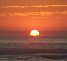 """Orange Skies by Lenora """"Slinky"""" Regan"""