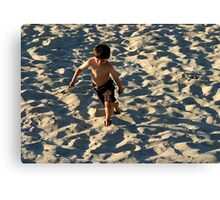 Beach Play Canvas Print