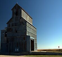 Old Arriba Grain Elevator by Scott Heinley