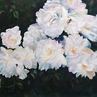 Everythings coming up roses. by Cathy Gilday