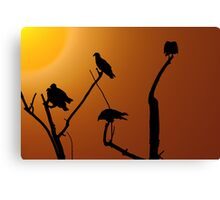 Vulture Roost Canvas Print
