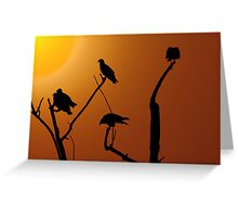 Vulture Roost Greeting Card