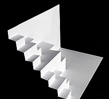 Paper Illusion by Donell Trostrud