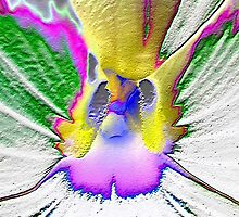 heart of a flower 7b (abstract) by Lenny La Rue, IPA