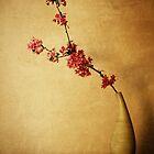 Spirit of Bushido by Tony Lomas