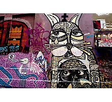 Cat and Bird Graffiti, Melbourne CBD Photographic Print