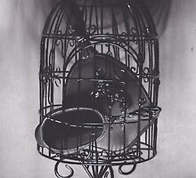 Realism Charcoal Drawing of Mirrors in Birdcage by brittnideweese