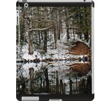 Mirror Mimicry iPad Case/Skin