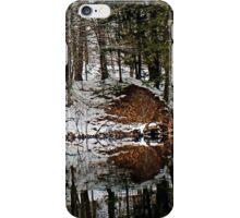 Mirror Mimicry iPhone Case/Skin