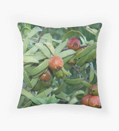 fruit of the sandlewood Throw Pillow