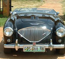 1953 Austin Healey BN1 100-4 2-seater by DavesClassics