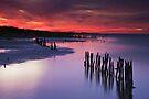 Lake Albert Sunset by KathyT