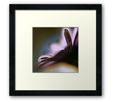 Colour Of Life XXXVII Framed Print