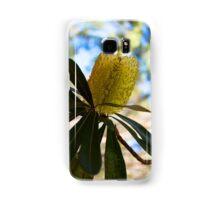Australian Bottle Brush Samsung Galaxy Case/Skin