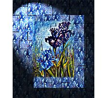 Irises Fantasy Photographic Print