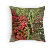 Autumnal Beginning Throw Pillow