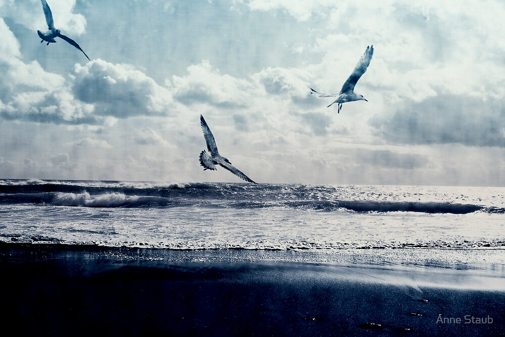 Freedom by Anne Staub