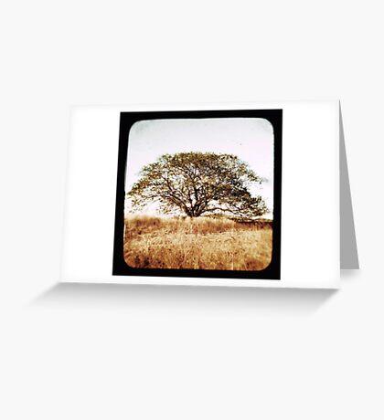 diramu Greeting Card