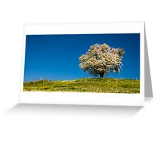 Single blossoming tree Greeting Card