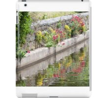 Riverside Colours iPad Case/Skin