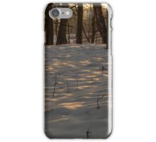 the last rays gilded invoice snow iPhone Case/Skin