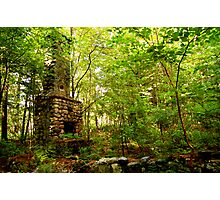 Fireplace in Woods Photographic Print
