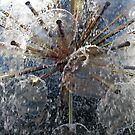 Art with water by Arie Koene