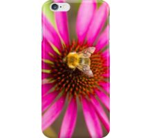 Bee on Pink Flower iPhone Case/Skin