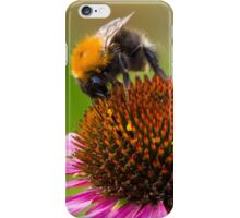 Looking for Nectar iPhone Case/Skin
