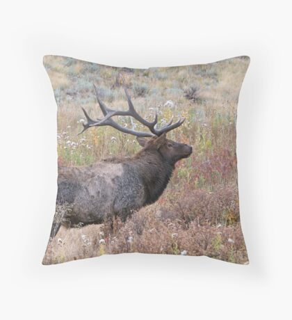 Dapper Dan Throw Pillow