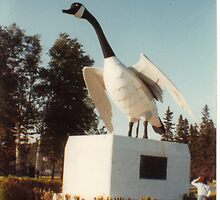Wawa Goose - Wawa Ontario by Allen Lucas