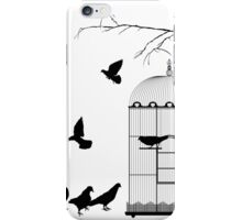 Birds and birdcage iPhone Case/Skin