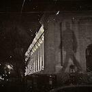 Galeries nationales du Grand Palais  by Patrick Czaplewski