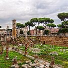 Ancient Forum Ruins – Impressions Of Rome by Georgia Mizuleva