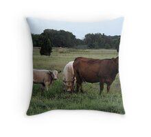 Country Bumpkins Throw Pillow