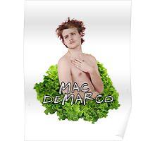 Mac Demarco - Salad Pose [Text Version]! Poster