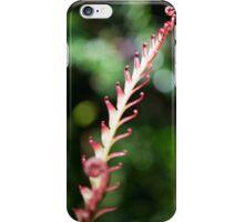 Fiddlehead Tree iPhone Case/Skin