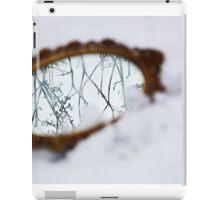Ornate mirror in the snow iPad Case/Skin