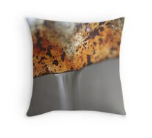 Rusted Pipes Throw Pillow