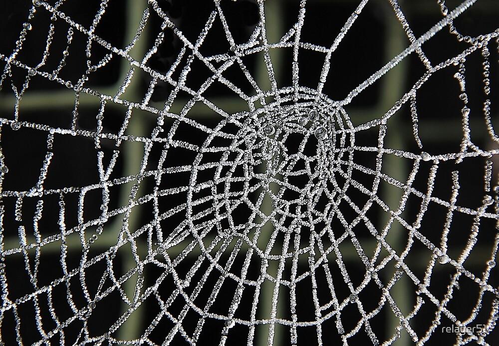Frozen Spider Web . by relayer51