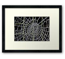 Frozen Spider Web . Framed Print