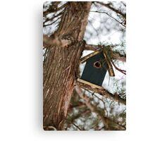 The little bird house Canvas Print